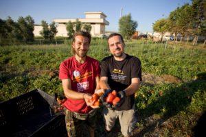 """""""Tomato revolution"""" la linea Altromercato di pomodoro biologica, sostenibile e caporalato-free"""